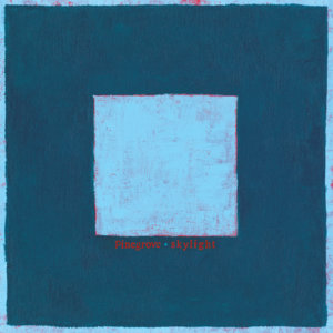 (recensione): Skylight – Pinegrove (self-released, 2018)