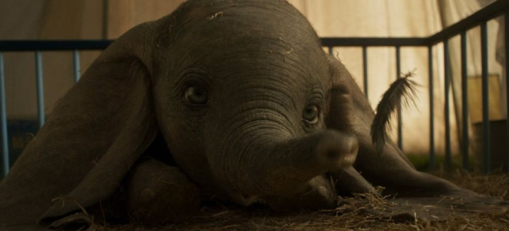 (movie & OST) : Dumbo (Tim Burton, 2019) – Baby Mine (Arcade Fire)